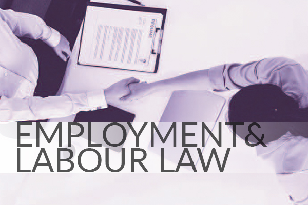 employment and labour law in malaysia